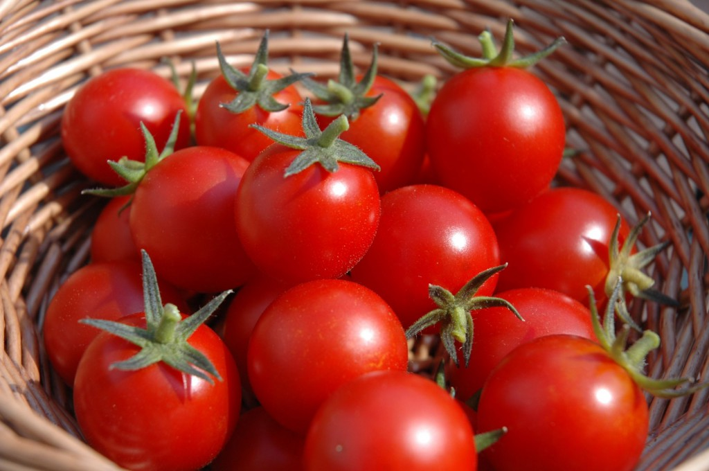 10-reason-to-eat-tomatoes-07.28.2015